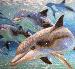 Mosaic art in pool Dolphins